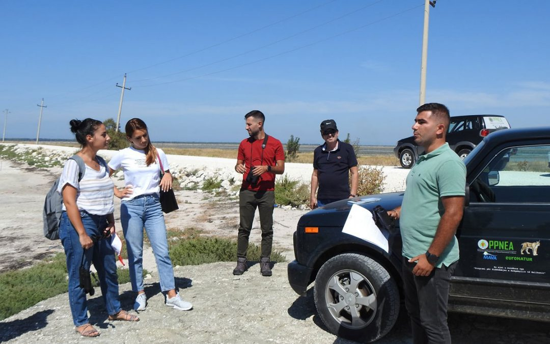 Media exchange was held at the Vjose-Narta, protected area in Albania